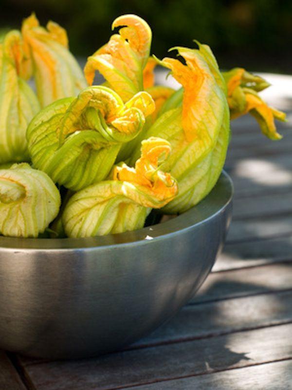 Pasta ai fiori di zucca e zucchine per l'estate