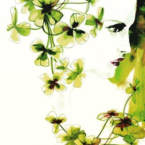 Lila Blumen Bestimmen. celosia caracas beautiful flowers, 4 ...