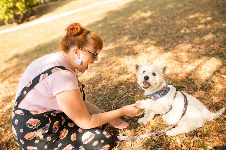 Single with dog: Road trips and rest stops – Little Red