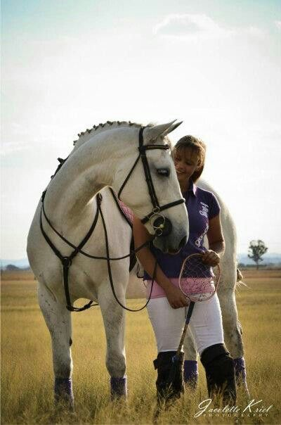 # Oda # Lipizzaner # Polocrosse