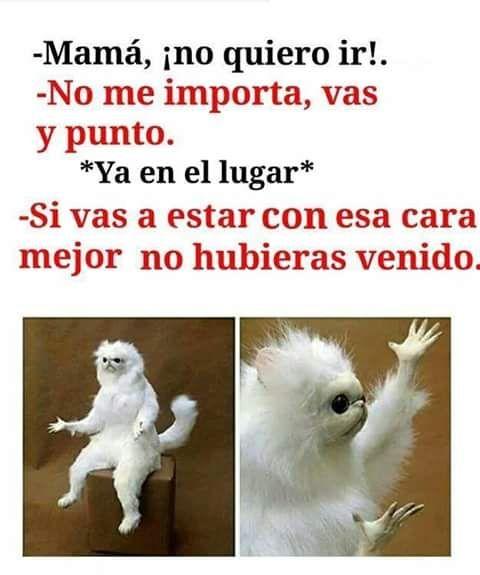 ★★★★★ Memes divertidos en español: Cuando me obligan a ir a algún lado I➨…