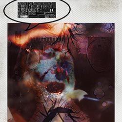 """#Morente (de la colección 8_apellidos granaínos). Fotografía tomada con una Polaroid SX-70 usando película de color Impossible Project. Revelado artesanal con acelerado mediante técnica de """"agua ardiente"""" Textos con tipografía plúmbica (letterpress)."""