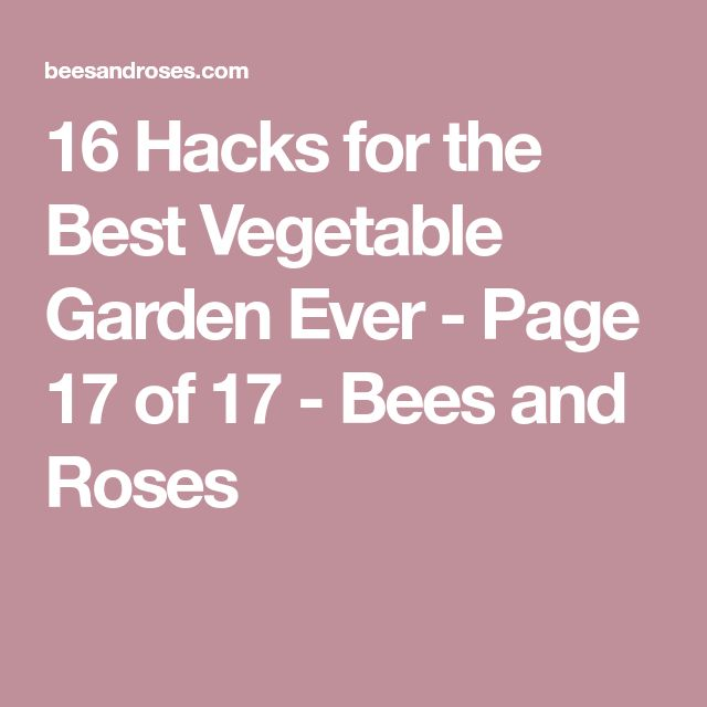 16 Hacks for the Best Vegetable Garden Ever - Page 17 of 17 - Bees and Roses