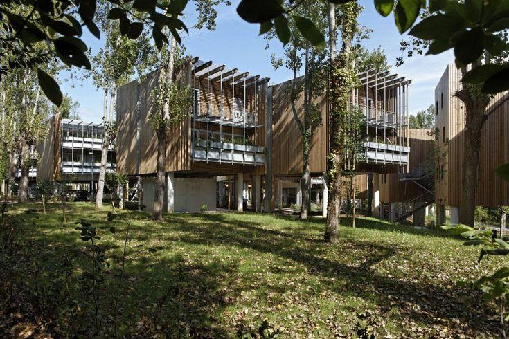Gallery of Collective Eco-Housing La Canopée / Patrick Arotcharen Architecte - 14