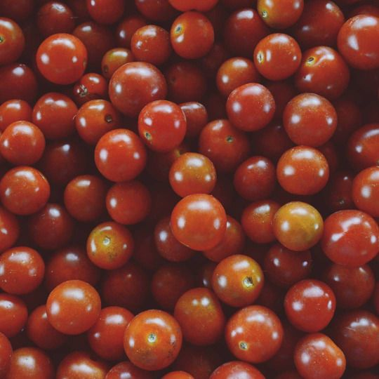 """Die Tomaten / Los tomates / The tomatoes """"Natural"""" series #learnspanish #learningspanish #deutschlernen #Vegetables #fruits #pattern #natural #series"""