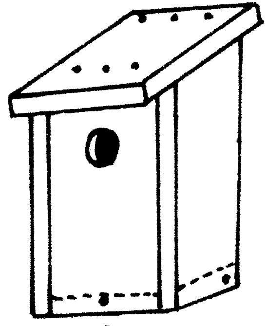 Linnunpönttö