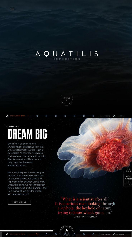 Aquatilis Expedition, April 29, 2014. http://www.awwwards.com/web-design-awards/aquatilis-expedition #UI #Inspiration #Web #Design #Video #Scroll #Navigation #Awwwards
