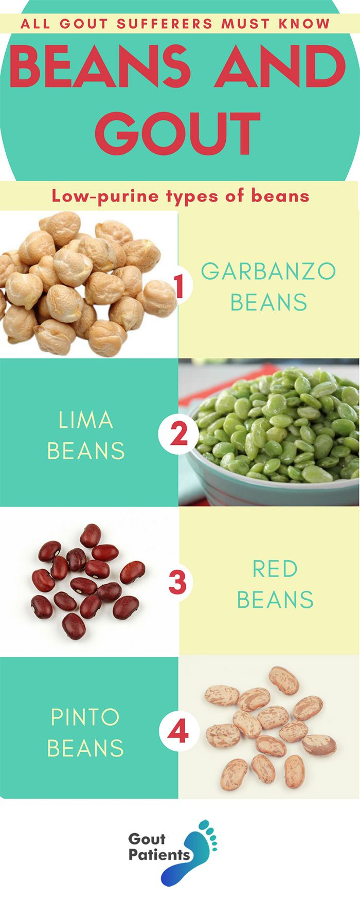 11 Types Of Beans For Gout Sufferers All You Need To Know Gout Recipes Gout Diet Recipes Gout Diet