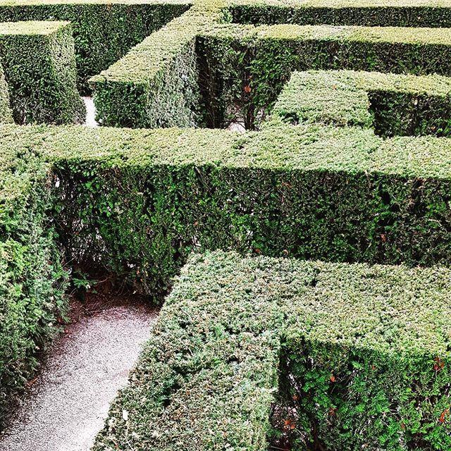 Hilfe Holt Mich Hier Raus Irrgarten Labyrinth Schlosspark Schlossgarten Schonbrunn Schoenbrunn Schlossschonbrunn Wien Outdoor Decor Instagram Outdoor