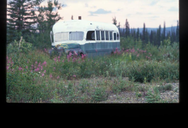 an analysis of chris journey in into the wild by jon krakauer Should we still care about chris mccandless jon krakauer's his journey was made famous in krakauer at the end of into the wild, krakauer describes.