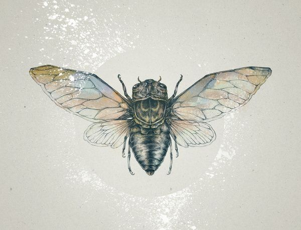 someday this on my leg...but brighter and even more colourful