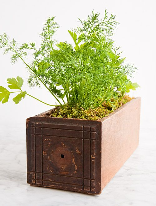 Herb Planters best 25+ indoor herb planters ideas only on pinterest | growing