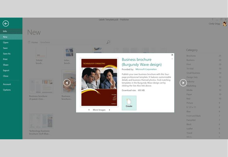 Microsoft's Best Free Templates for Publisher: Professional Full Page Brochure Template or Printable for Microsoft Publisher