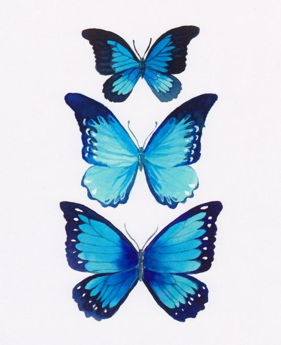 Blue Morpho Butterfly Painting by FuzzyCraft on Etsy
