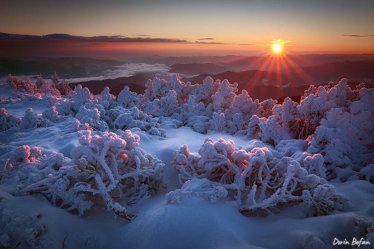 Frozen Ceahlau National Park