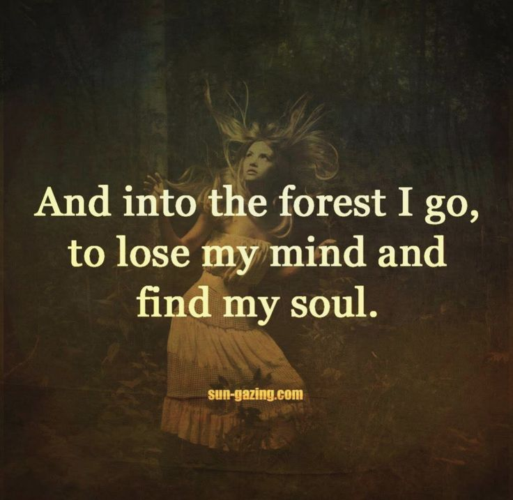 Into the forest the forest and to lose on pinterest