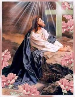 Maria Divine Mercy's Message of The Warning and The Second Coming of Jesus: You must pray for their souls, as they have sold t...