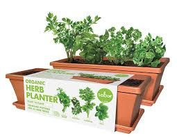 Organic Planter Kits  Grow your own, with easy steps.  www.herb.co.za