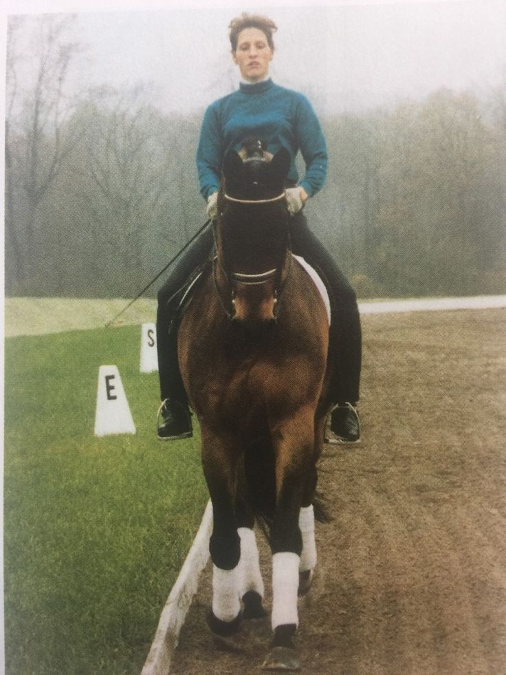 Correcting Rider Asymmetry. Centered Riding founder Sally Swift discusses the importance of being a symmetrical rider and gives several exercises to correct asymmetry.