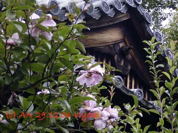 Kyoto (photo AN)