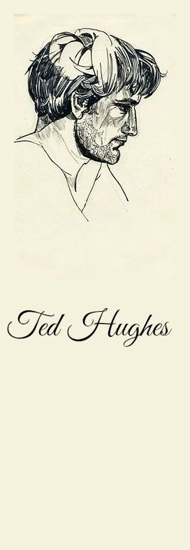 ted hughes and sylvia plath essay Sylvia plath, ted hughes, and the myth of textual betrayal stephen enniss in sylvia plath's suicide just six years later was the tragic conclusion to have approached plath's poems by way of perloffs essay.