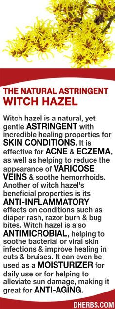 @: Witch hazel is a natural & gentle ASTRINGENT with healing properties for SKIN CONDITIONS. It's effective for ACNE & ECZEMA, and helps to reduce the appearance of VARICOSE VEINS & soothe hemorrhoids. It has ANTI-INFLAMMATORY effects for diaper rash, razor burn & bug bites. It is also ANTIMICROBIAL, helping to soothe bacterial or viral skin infections & improve healing in cuts & bruises. It can be a MOISTURIZER for daily use or for helping to alleviate sun damage, making it great for…