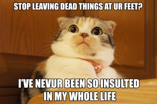 I never!