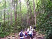 Reedy Creek Hiking Club