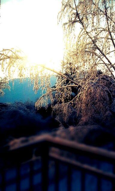 Pierwszy śnieg 25.12.14r.