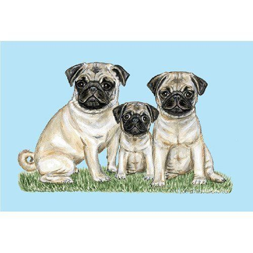 """Betsy Drake DM077 Pugs Door Mat 18x26 by Betsy Drake. $28.00. Measures 18x26.. These floor mats are made of synthetic washable material that will stand up to years of wear with a. Design is stylish and innovative.. Manufactured to the Highest Quality Available.. Satisfaction Ensured.. These floor mats are made of synthetic washable material that will stand up to years of wear with a non-slip rubber backing. Measures 18""""x26"""". Manufactured to the Highest Quality Ava..."""