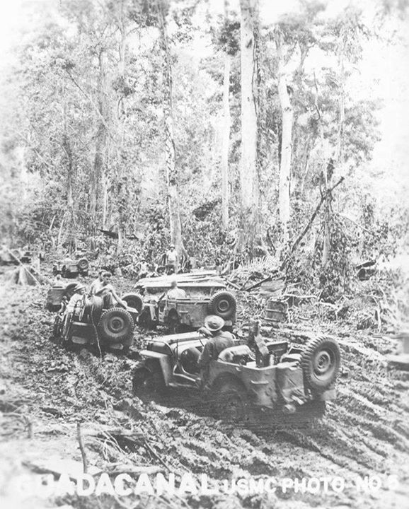 Jeeps during Guadalcanal campaign late 1942.