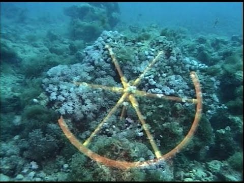 Chariot Wheels Found In Red Sea