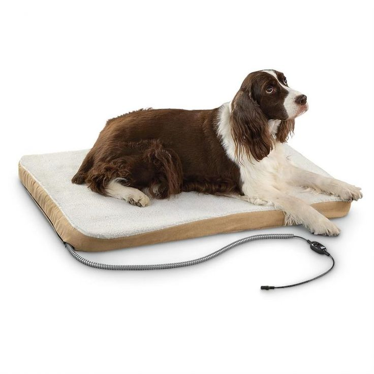 Warmer Sleep For Your Dogs With Heated Dog Bed