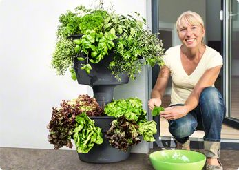 The market leader in self-watering plants, the Lechuza sub-irrigation system provides a complete, hands-off solution for indoor plant growing.