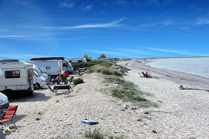 Naturcampingplatz ✔ nur durch eine Wildrosenhecke vom weitläufigen Strand getrennt ✔ Surfer-, Kiter- und Radlerparadies ✔ hundefreundlich ✔