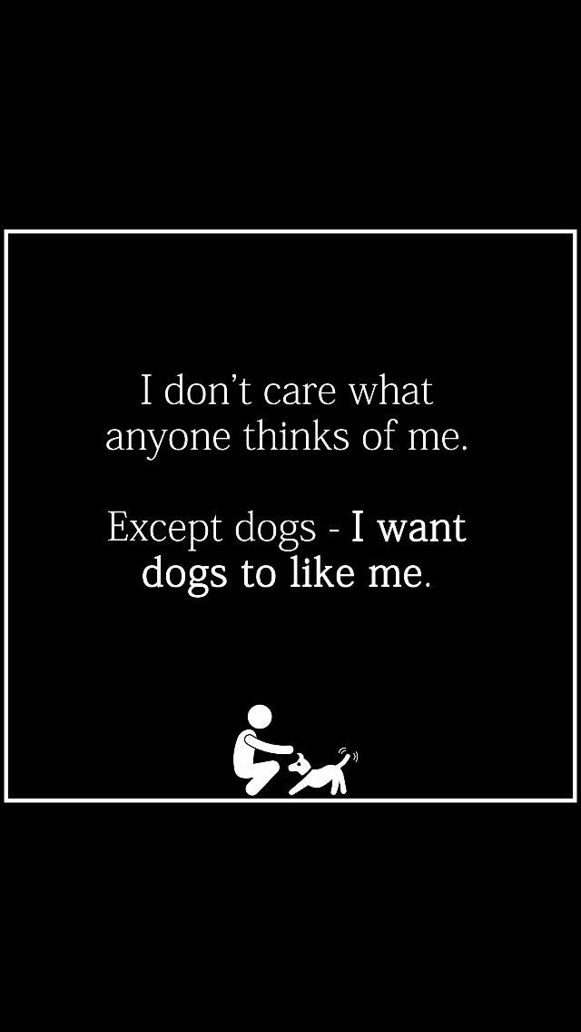 Real life right here!! I don't trust people that dogs don't like/that don't like dogs...