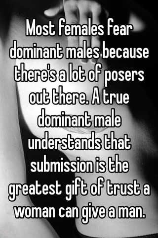 Most Females Fear Dominant Males Because There 39 S A Lot Of