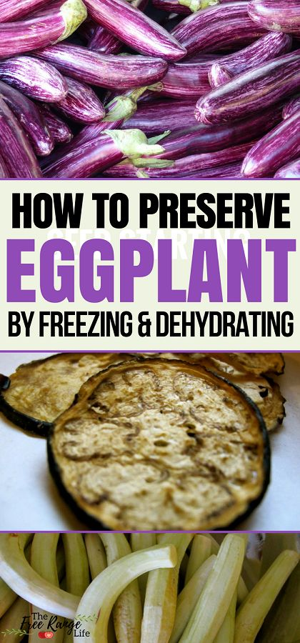 Food Preservation: Learn how to preserve eggplant by freezing and dehydrating to enjoy it all year long!