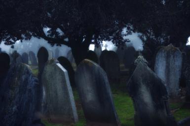 Ehre den Ahnen, Kreislauf von Leben und Tod (englischer Artikel)
