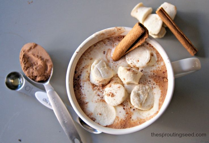 mexican hot chocolate (dairy free, paleo) from thesproutingseed.com