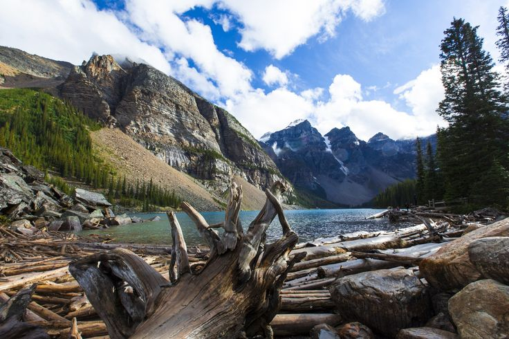 Photograph Moraine Lake Driftwood by Rachel MacDonald on 500px