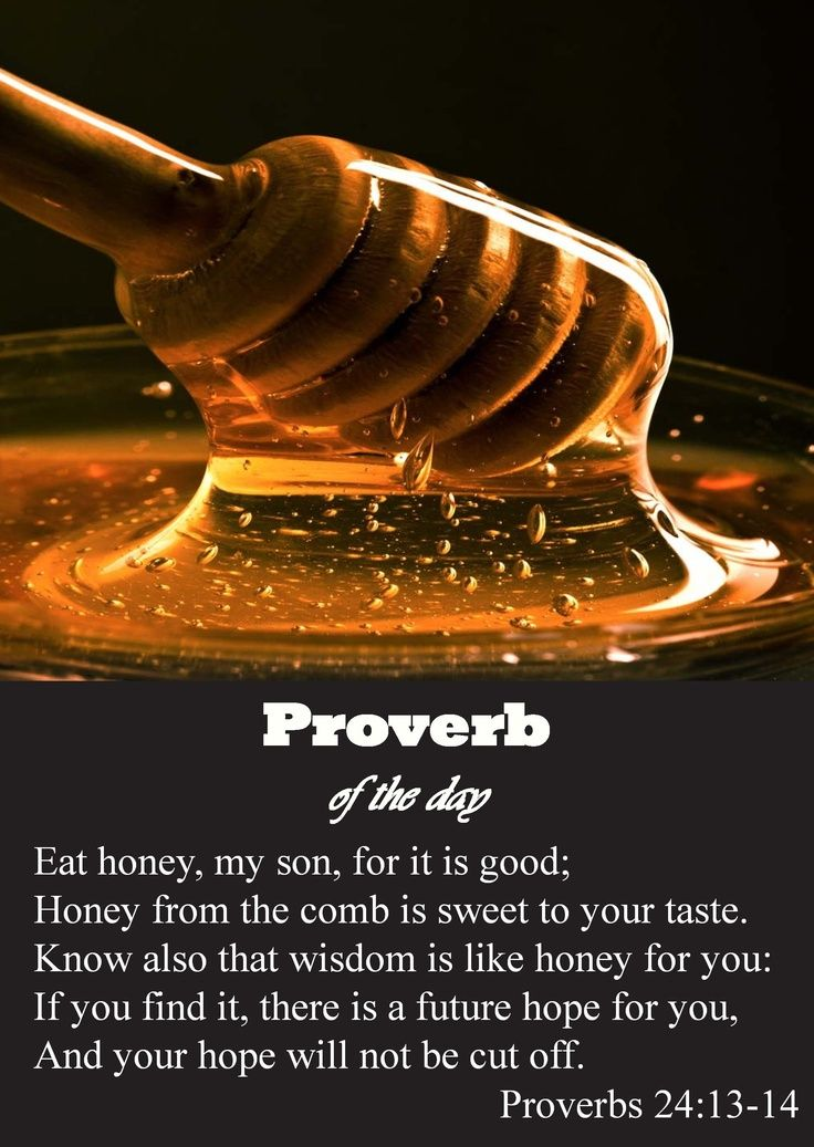 Eat honey, my son, for it is good, and the honeycomb is sweet to your palate; realize that wisdom is the same for you.  If you find it, you will have a future, and your hope will never fade.  Proverbs 24:13-14