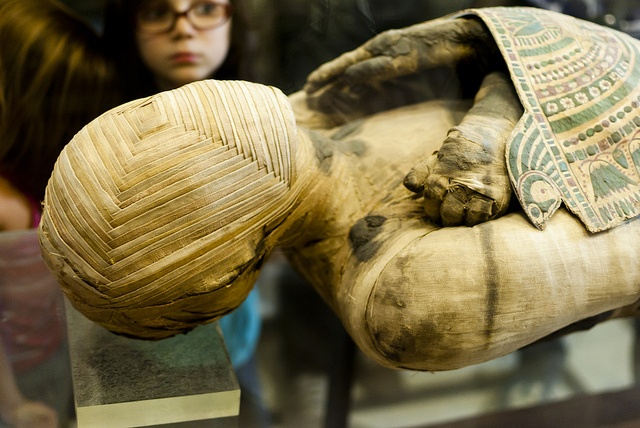 traces of tuberculosis found in mummies of egypt Details about huge ancient egypt mummies jewelry coffin tomb furnishings amulets shabti papyri.