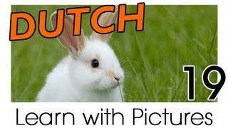Dutch learn with pictures - YouTube