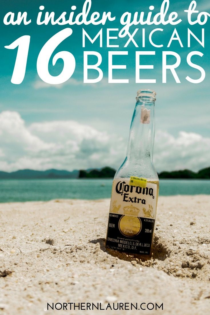 insiders guide to mexican beers
