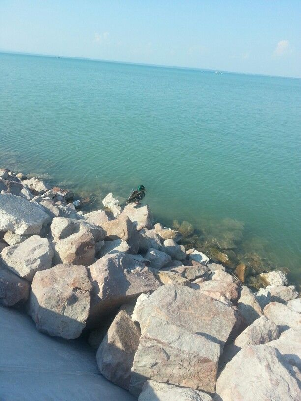Love the color of Balaton in the summertime.. and in wintertime.. basically i love the Balaton :):)