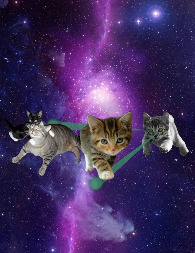 Cat With Galaxy Glasses Shirt