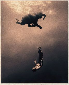 Gregory Colbert's Ashes and Snow project weaves together photographic works, 35mm films, art installations and a novel in letters. He has captured extraordinary interactions between humans and animals.  Ashes and Snow supports the work of Flying Elephants Foundation, a U.S.-based non profit organization.