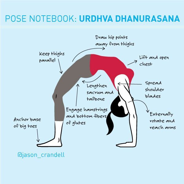 A full breakdown for the mother of all backbends: Urdhva Dhanurasana