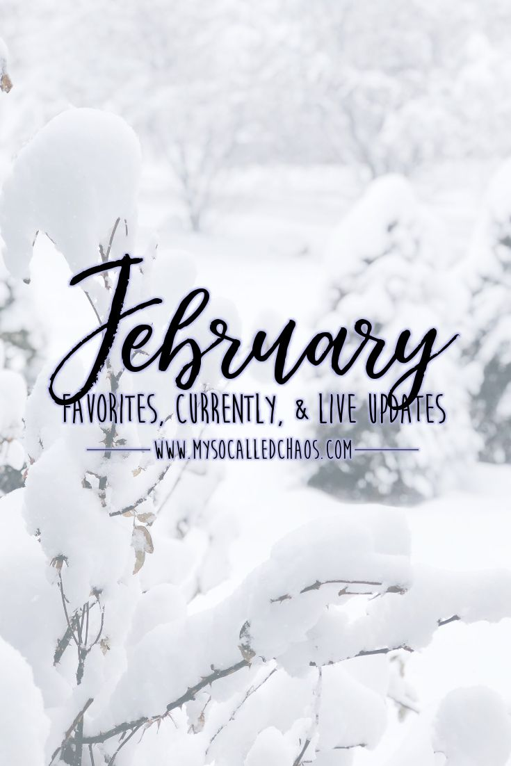 February has come to an end, and it included so much goodness. Here's a recap of our life for the month, my currently update, and some February favorites...